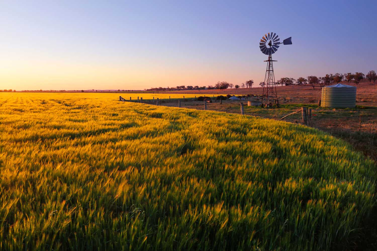 AxisTech IoT and Data Solutions for Agribusiness