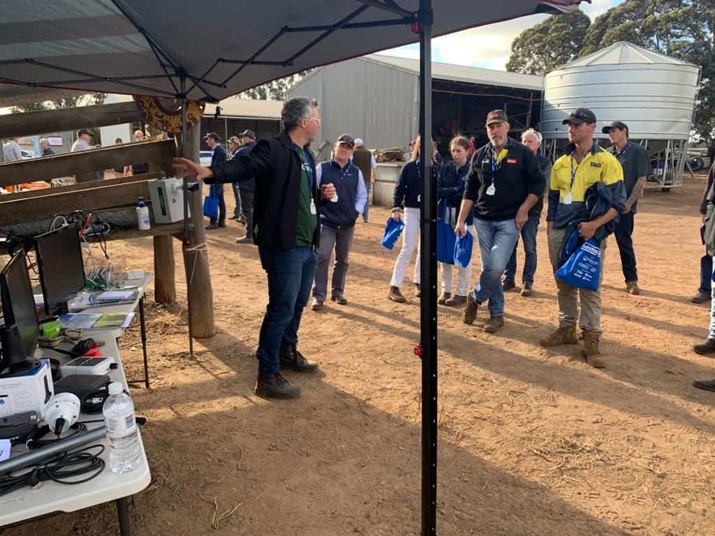 Great Southern Livestock'20_Wes_Lawrence_AxisTech